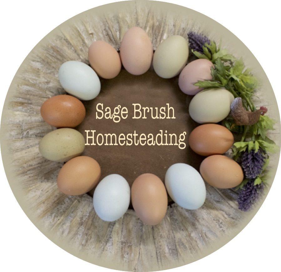 Sage Brush Homesteading